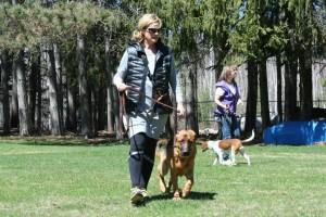 confident-dog-owner: Ottawa, Ontario