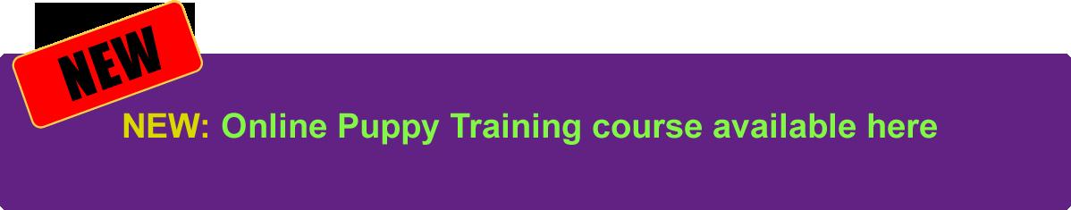 Online Puppy Course